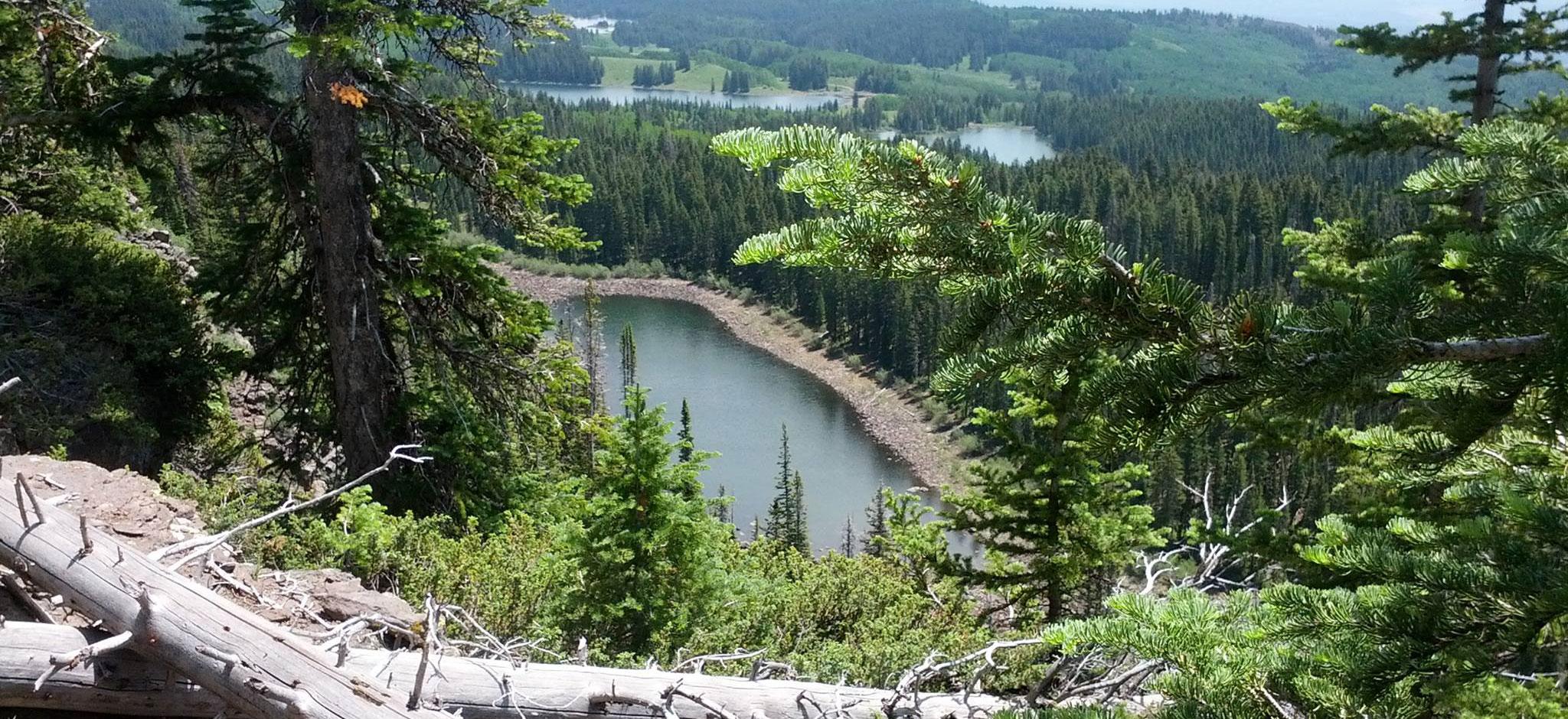 Grand-Mesa-Land-O-Lakes